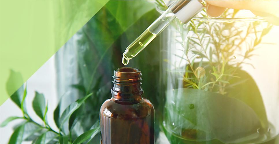 FDA20-หลักสูตรผู้มีหน้าที่ปฏิบัติการขายยาพัฒนาจากสมุนไพร966x499